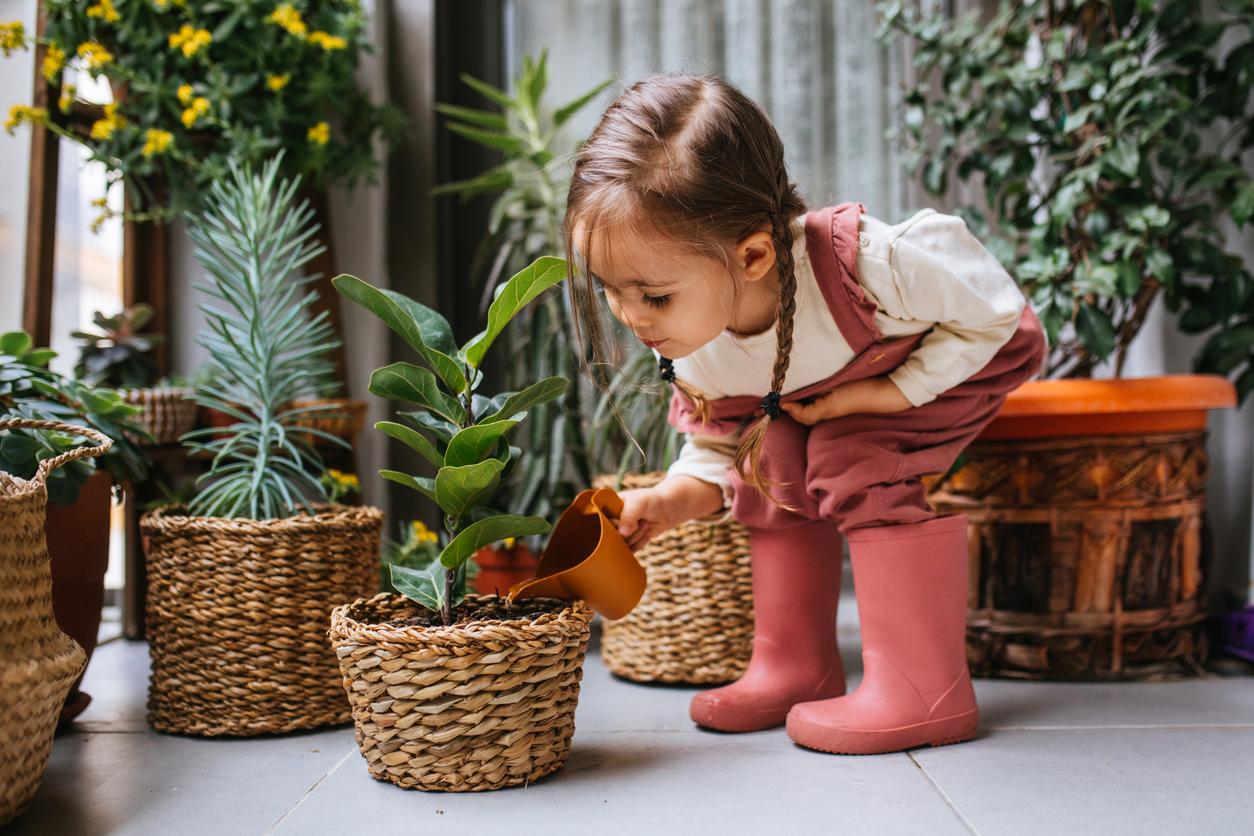 Fotosintesi clorofilliana per bambini: una spiegazione semplice