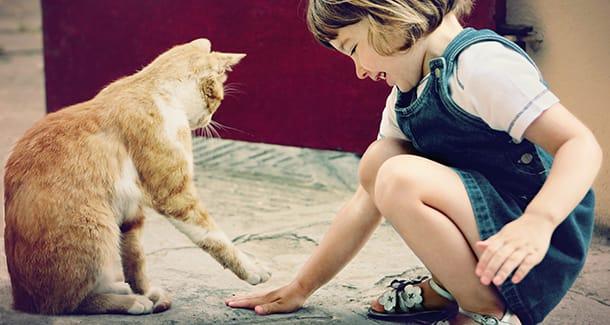 Vantaggi crescere con animali