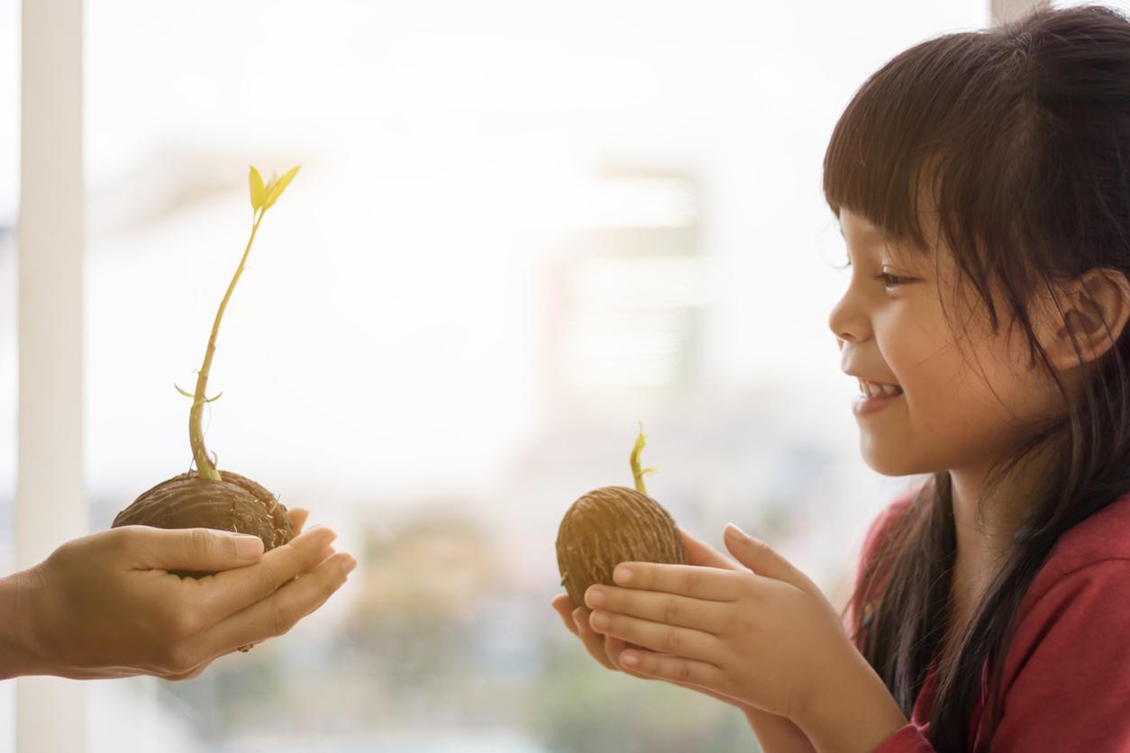 Parti del fiore: come spiegare ai bambini quali sono e a cosa servono
