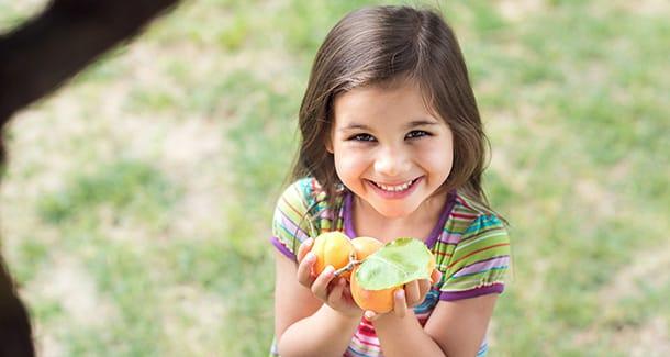 Valori nutrizionali albicocca